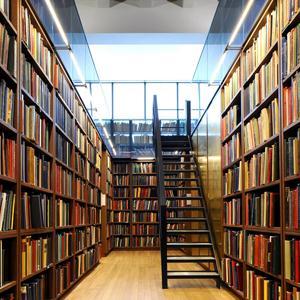 Библиотеки Каракулино